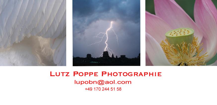 Startseite_lupobn_Lutz Poppe