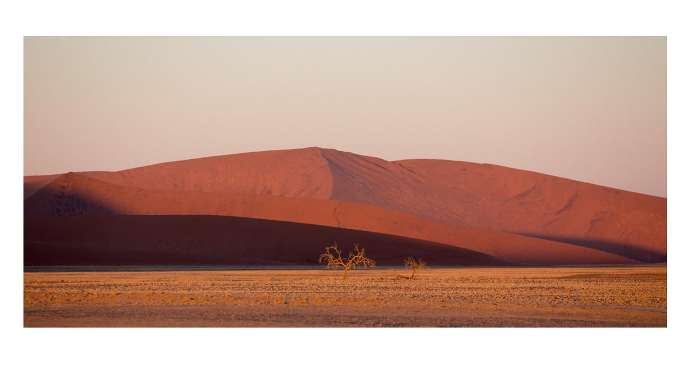 ©lupobn_Namibia2014_84