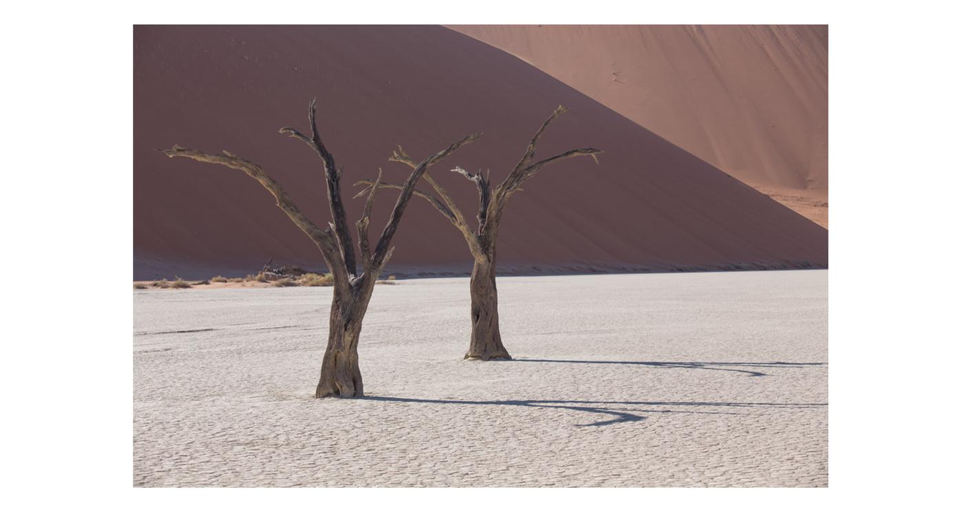 ©lupobn_Namibia2014_87