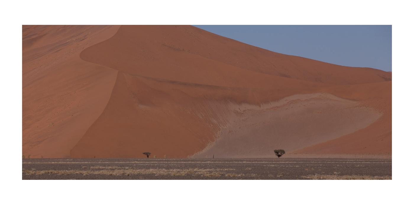 ©lupobn_Namibia2014_90